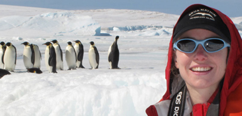 Polar researcher Heather Lynch with emperor penquins